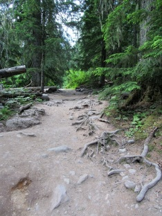 The Avalanche Trail