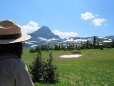 Bighorn-Sheep-Ranger