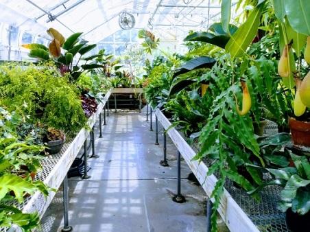 Newfields-Garden-Greenhouse