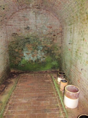The Interior of the Icehouse