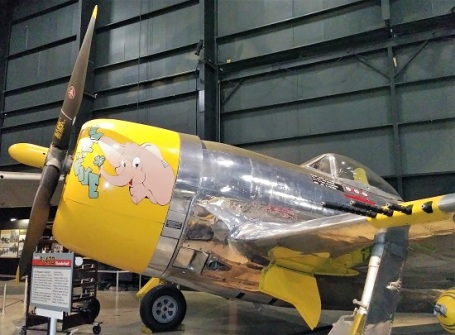 MAF-Elephant-Noseart