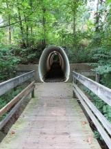 Hiking through a culvert!