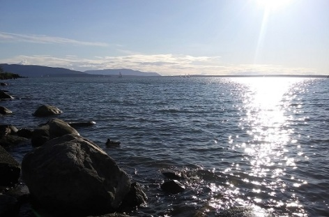 Cornwall Beach and Bellingham Bay