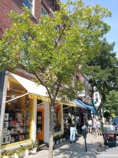 Woodstock-Bookstore