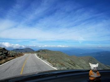 Mt-Washington-View